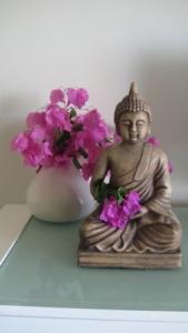 Buddha Carole xs
